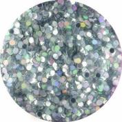 erikonail Hologram Round 1mm Holo silver ERI-67