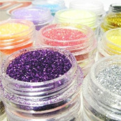 Nail Dust Glitter Powder 12 Colour