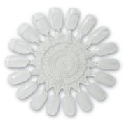 Debra Lynn Professional Nail Polish Palette