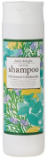 Global Product Planning Daily Delight | Shampoo | Peppermint Cederwood 300ml