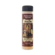 Henne Colour Golden Brown Henna Maintenance Shampoo 250ml