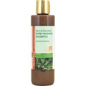 Alaffia Scalp Recovery Shampoo Neem and Shea -- 240ml