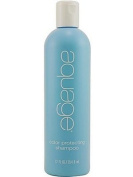 Aquage Colour Protecting Shampoo 350ml