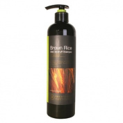 Hyssop Organic Brown Rice Anti Dandruff Shampoo 18.3fl.oz/520ml
