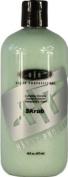 Hantz Professional Skrub Shampoo 470ml