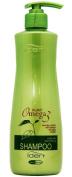 iden Plant Omega 3 Shampoo - 500ml