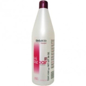 Salerm Hi Repair Shampoo 01, 1060ml