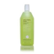 Elucence Volume Clarifying Shampoo Litre