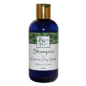 Kettle Care Chronic Dry Scalp Shampoo with Propolis, 240ml