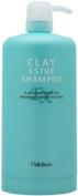 Moltobene Clay Esthe EX Shampoo 1000ml