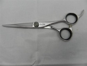 Antelope Professional Hair Cutting Scissors Shear B04 Series Brand New