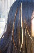 """4""""-15cm feathers- Five Natural Dark Browns with Beige Mix Feathers for Salon Quality Hair Extension."""