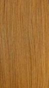 Sensationnel Braid Now 100% Kanekalon Fibre #27 Honey Blonde