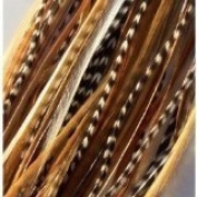 """4""""-15cm Beautiful Natural Mix Feather Hair Extension Made of Salon Quality Feathers"""