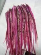 "Feather Hair Extensions 6""-25cm Pink with Grizzly and Brown Feathers That Are Quality Salon"