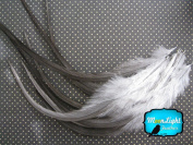 Moonlight Feather, Hair Extension Feathers; Solid Dark Dun Thick Rooster Feathers; 29cm Long and Up; 6 Pieces Per Pack