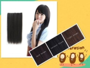 Light Brown Clip Extension Hair Piece Long Straight Pj11