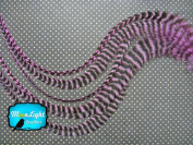 Moonlight Feather, Hair Extension Feathers; Lavender Grizzly Thick Rooster Feathers; 29cm Long and Up; 6 Pieces Per Pack