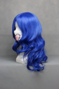 Ruler Vocaloid-kaito Dark Blue Anime Cosplay Wig Cos-028a