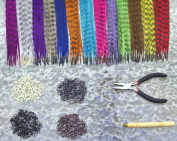 Feather Hair Extension Kit with 52 Synthetic Feathers, 100 Beads, Pliers and Hook