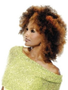 Vivica Fox/Beverly Johnson - 100% Human Hair - Kinky Bulk #6 Medium Brown
