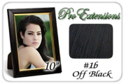 25cm Inch #1b Off Black Pro Extensions Human Hair Extensions