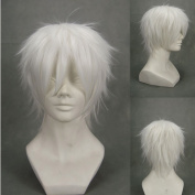 "12.6"" 32cm Layered Silver White Cosplay Wig -- No. 6 Nezumi X Shion"