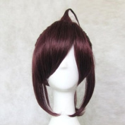 Dream2reality Cosplay_Inu x Boku Secret Service_Sorinoduka Lenshou_2 ponytails_35cm_purple brown_Japanese high temperature resistant fibre wigs