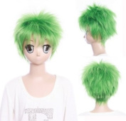 Cosplayland C968 -One Piece Roronoa Zoro 26cm bright green straight Heat Resistant short Wig
