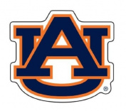 Innovative Adhesives C-FN-AUBURN Fan-A-Peel Temporary Fingernail Tattoo-Sticker