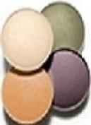 Avon True Colour Eyeshadow Quad Earthtones Quatuor Terra