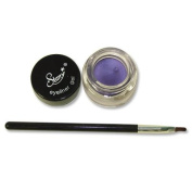 Starry Long Lasting Waterproof Eyeliner Gel with Brush Purple Surprise 2011 New Colour