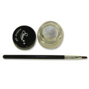 Starry Long Lasting Waterproof Eyeliner Gel with Brush Titanium Metalliac Silver 2011 New Colour