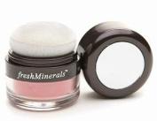 Fresh Minerals Mineral Blush Powder, 905515 Natural Touch 10ml