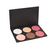 Crazy Cart Professional 6 Colour Makeup Cosmetic Blush Blusher Contour Powder Palette