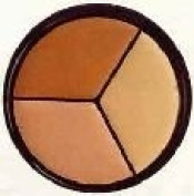 Pro Palette Correct & Conceal Concealer ~ Medium Neutral, Light Amber, Deep Sand