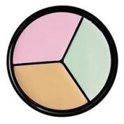 Pro Palette Correct & Conceal Concealer Neutralizer Wheel - Yellow, Mint, Mauve