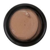 Leichner Camera Clear Tinted Foundation Blend of Creme Caramel 30 ml