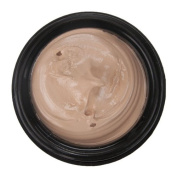 Camera Clear Tinted Foundation by Leichner Blend of Porcelain 30ml