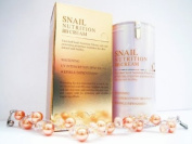 [Brand New] Skin 79 Snail Nutrition BB Cream
