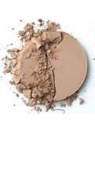 Beauticontrol Wet Dry Foundation P3