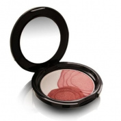 Shiseido Camellia Compact Limited Edition