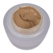 Ceramide Ultra Lift and Firm Makeup SPF15 by Elizabeth Arden Buff 08 30g