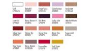 Sebastian Trucco Firecracker Divinyls Lip Gloss 3.8 g / 5ml