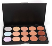 New 15 Colour Cosmetic Concealer Corrector Foundation Palette Primer Makeup Plate