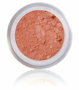 Anise XL Pure Mineral Blush - 100% Pure All Natural Mineral Makeup
