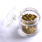 LY Golden Colour Nail Art Sparkling Glitter Powder Dust Tips Salon Set B0392