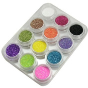 ASHOPONE 12 Colours Glitter Powder Dust Nail Art Tip Decoration