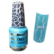 Mia Secret Crackle Nail Polish Sky