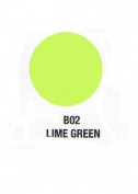 Verity Nail Polish Lime Green B02